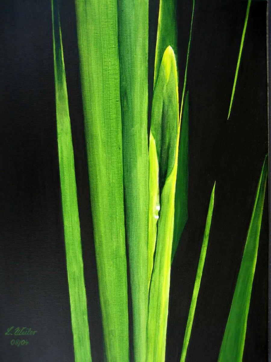 P2, Schilf, 2004, A-L, 50x40, © Lore Weiler