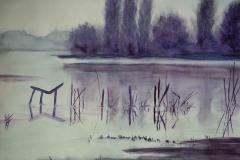 L10, Schilf im See, 2004, Aquarell, 40x50, © Lore Weiler