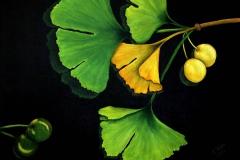 G1, Ginkgo I, 2004, A-L, 50x40, © Lore Weiler
