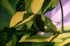 P5, Grüne Walnüsse am Baum, 2005, A-L, 40x60, © Lore Weiler